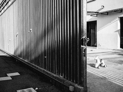 Improvvisa chiusura di via Mattei: la posizione del Consorzio